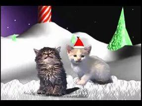 Поющие коты